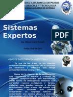 TEMA 1 sistemas expertos