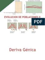 Deriva Génica. Evolución Sin Selección Natural