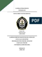 Cover Laporan Praktikum Petrologi