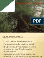 Introduccion Clase I ecologia.pptx