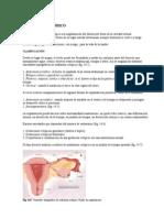 Embarazo Ectópico , Dpm ,Rotura Uterina