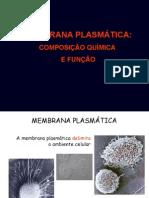 Aula UFF 1 de 2012 - Membrana Plasmática
