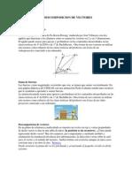COMPOSICION Y DESCOMPOSICION DE VECTORES.pdf