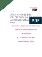 Aplicaciones Del CÁLCULO en La INGENIERÍA Agroindustrial