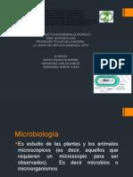 MICROBIOLOGIA 3.pptx