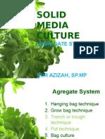 Agregate System