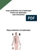 Mapa Anatómico de La Apiterapia