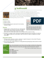 A40 Making Leafmould