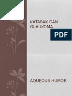 Katarak Dan Glaukoma