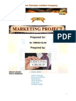 17230819 Marketing Plan for a New Product With Diagram