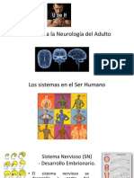 1 Clase Introducción a La Neurología Del Adulto FINAL