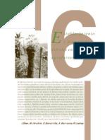 Establecimiento y Manejo de Árboles en Sistemas Agroforestales