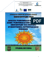 Studiu de zona II  GAL Orizonturi 2012.pdf