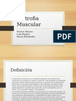 Distrofia Muscular (1)
