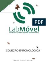 Colecoes Entomologicas