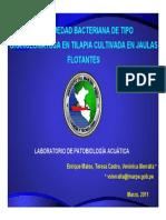 ESTUDIO EDWARSIELLA EN TILAPIA.pdf