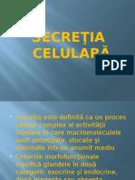 8.Secretia celulara