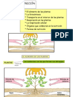 Tema 2. La Nutrición en Las Plantas