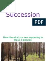 succession pp