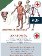 Anatomia y Fisiologia Humana 2015