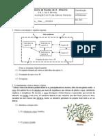 Ficha de avaliação de CN 8º Ano (factores abióticos e bióticos; fluxo de energia e ciclo de matéria)
