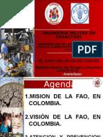 Presentacion FAO