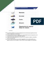 Niveles Organizativos SAP