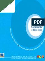 COMPREENDER A BAIXA VISÃO.pdf