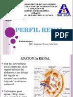 Perfil Renal
