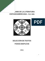 Selección de Textos Poesía Mapuche