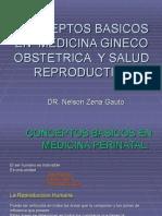 2- CONCEPTOS BASICOS EN MEDICINA PERINATAL Y SALUD REPRODUCTIVA.ppt