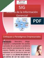 SISTEMA DE LA INFORMACION GERENCIAL Previo 1.pdf
