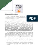 Declaración Publica TRICEL FEUV 2015