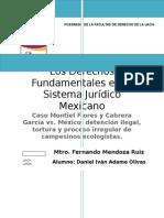 Cabrera Garcia y Montiel Flores vs Mexico