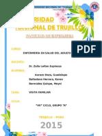 Plan Visita Doña Alfonsa