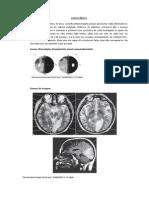 Gabarito Casos clínicos - Vascularização.pdf