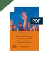 Democracia Participativa Una Utopia en Marcha eBook