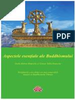 Aspectele Esentiale Ale Buddhismului