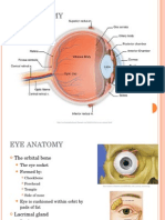3800Lecture 1- Eye Anatomy