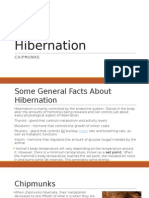 Hibernation (1)