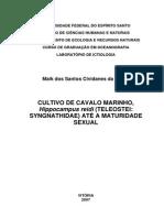 CULTIVO DE CAVALO MARINHO, Hippocampus reidi (TELEOSTEI