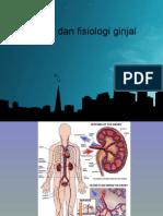 Anatomi Fisiologi Ginjal111