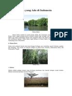 5 enis Hutan Yang Ada Di