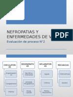 NEfropatias