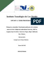 Tesis Poliquetos Epibiontes de Mano de Leon FINAL 12 Marzo