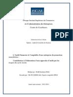 L'Audit Financier Et Comptable d'Une Entreprise de Promotion Immobilière Contribution à l'Élaborat (1)