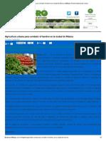 Agricultura Urbana Para Combatir El Hambre en La Ciudad de México _ 2000Agro Revista Industrial Del Campo