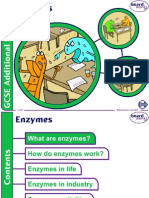 AS biology unit 1 enzymes.ppt