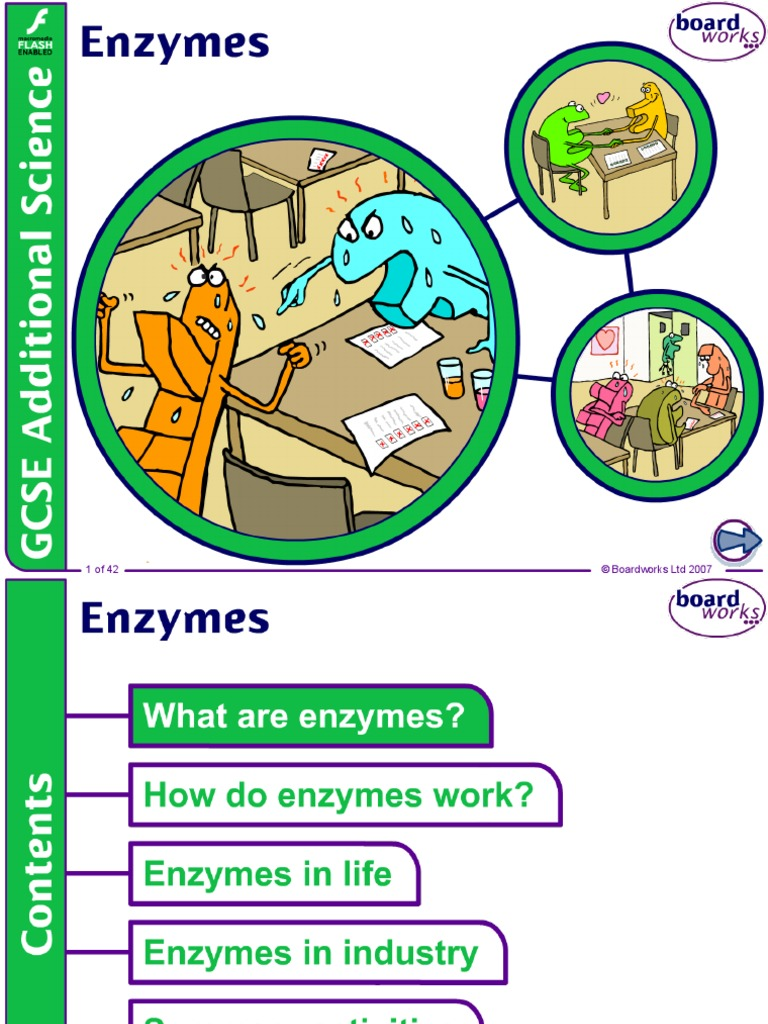 AS biology unit 1 enzymes ppt | Enzyme | Active Site
