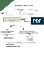 2_perfil-plaquetario